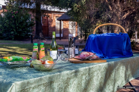 Picnic braai in the garden